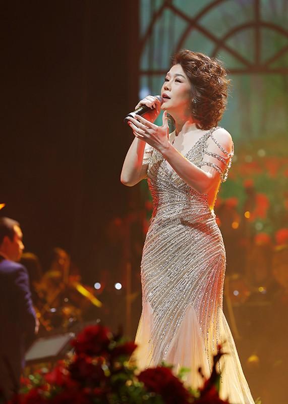 My Tam bieu dien cuc sung trong dem nhac tai Ha Noi-Hinh-8