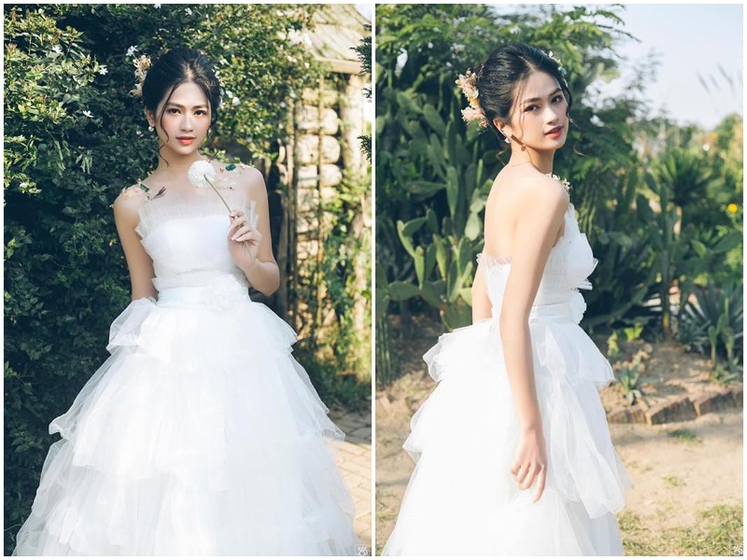 Nhan sac Top 5 Hoa hau The gioi Viet Nam lam MC VTV-Hinh-2