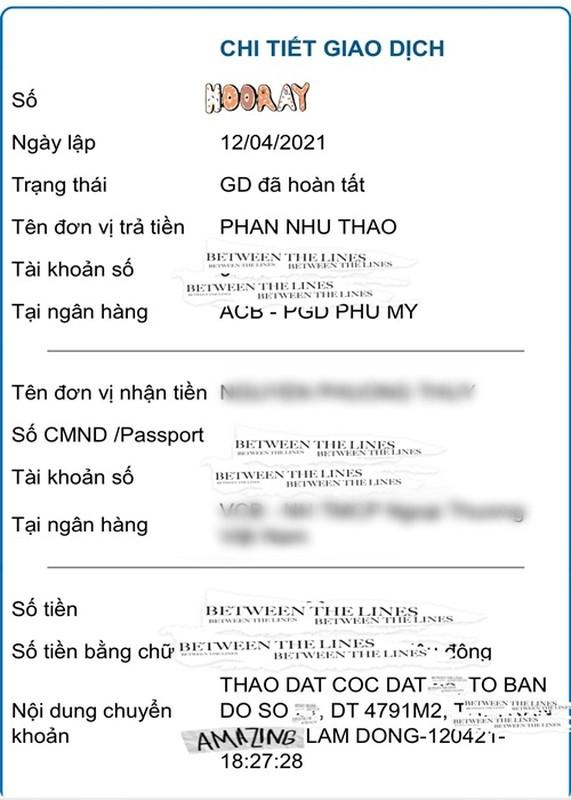 Phan Nhu Thao duoc chong dai gia tang gan 5.000 m2 dat-Hinh-2