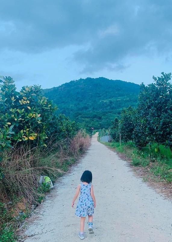 Phan Nhu Thao duoc chong dai gia tang gan 5.000 m2 dat-Hinh-3