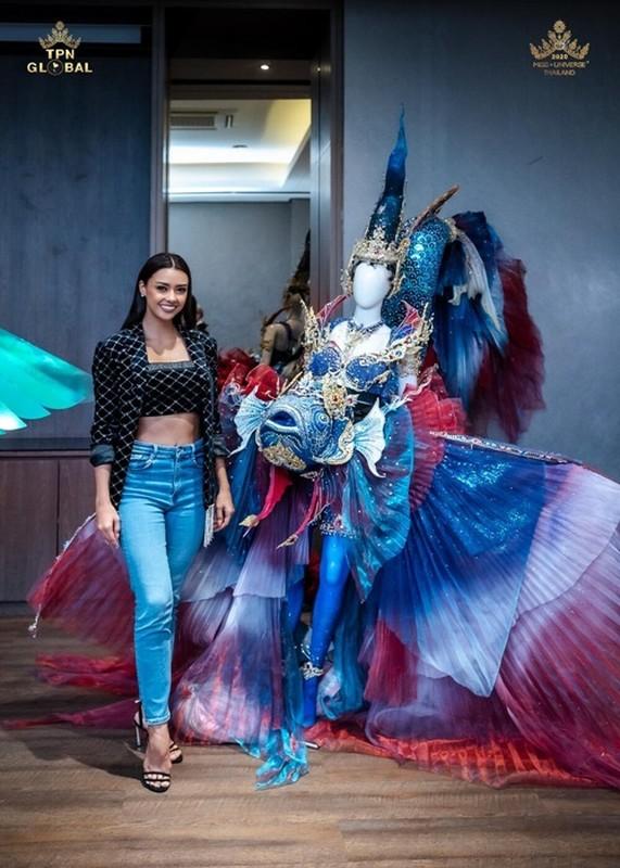 Soi quoc phuc thi Miss Universe cua Khanh Van va hai doi thu-Hinh-4