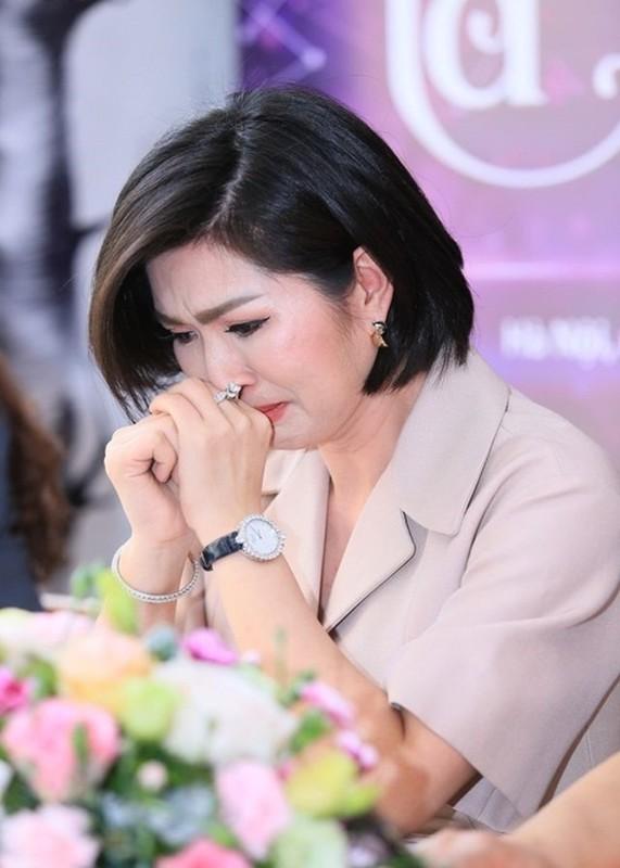 Nguyen Hong Nhung nhac lai scandal anh nong, soi cuoc song xa xu-Hinh-2