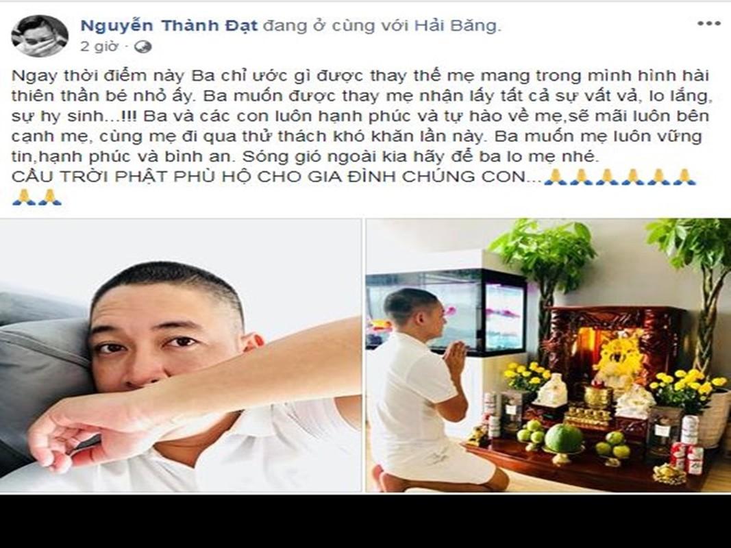Soi ly do Ngoc Trinh va loat sao Viet xuong toc-Hinh-4
