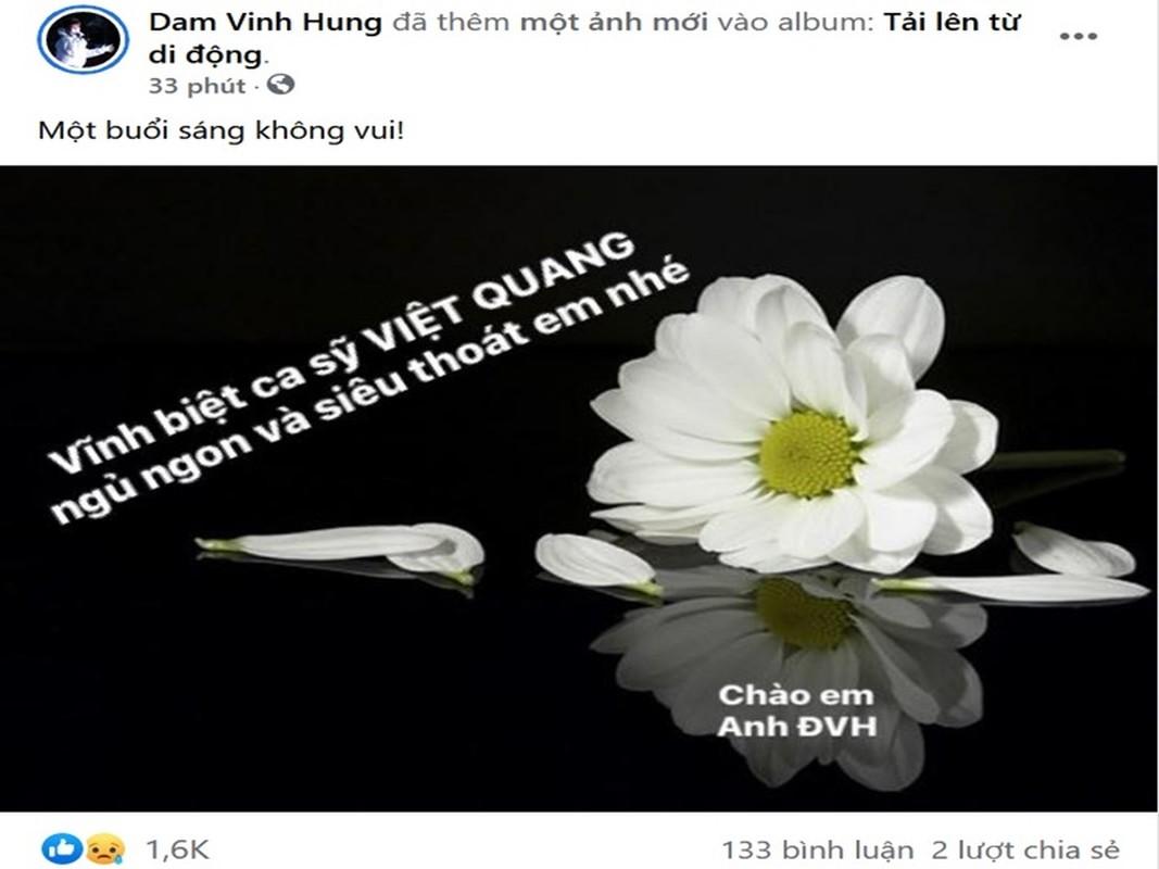 Sao Viet tiec thuong ca si Viet Quang qua doi-Hinh-6