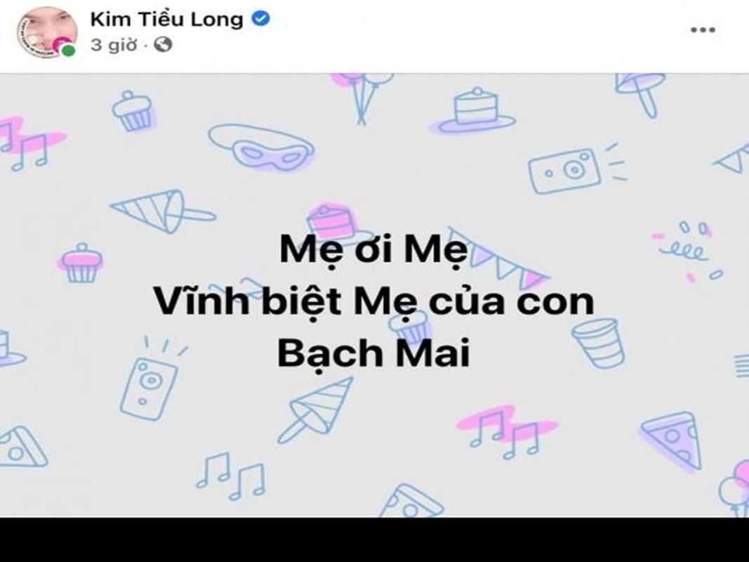 Viet Huong nua dem den benh vien lo hau su nghe si Bach Mai-Hinh-8