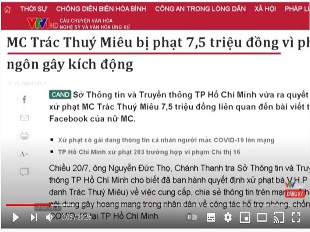 Loat sao Viet dinh lum xum bi VTV diem ten tren song-Hinh-6