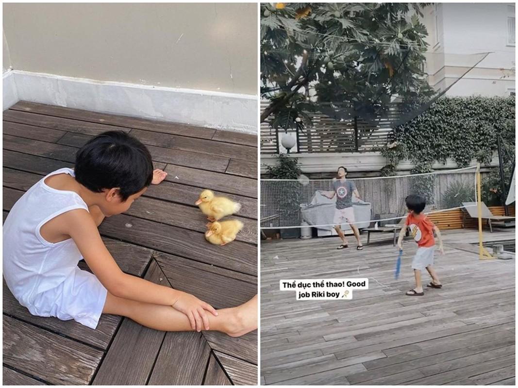 Soi cuoc song cua quy tu, cong chua nha Tang Thanh Ha-Hinh-7