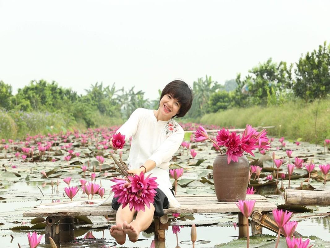 MC Diem Quynh xinh dep man ma o tuoi U50-Hinh-3