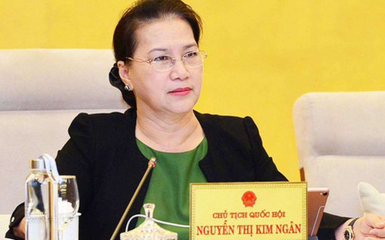 Chan dung nhung nu lanh dao cap cao o Viet Nam-Hinh-3