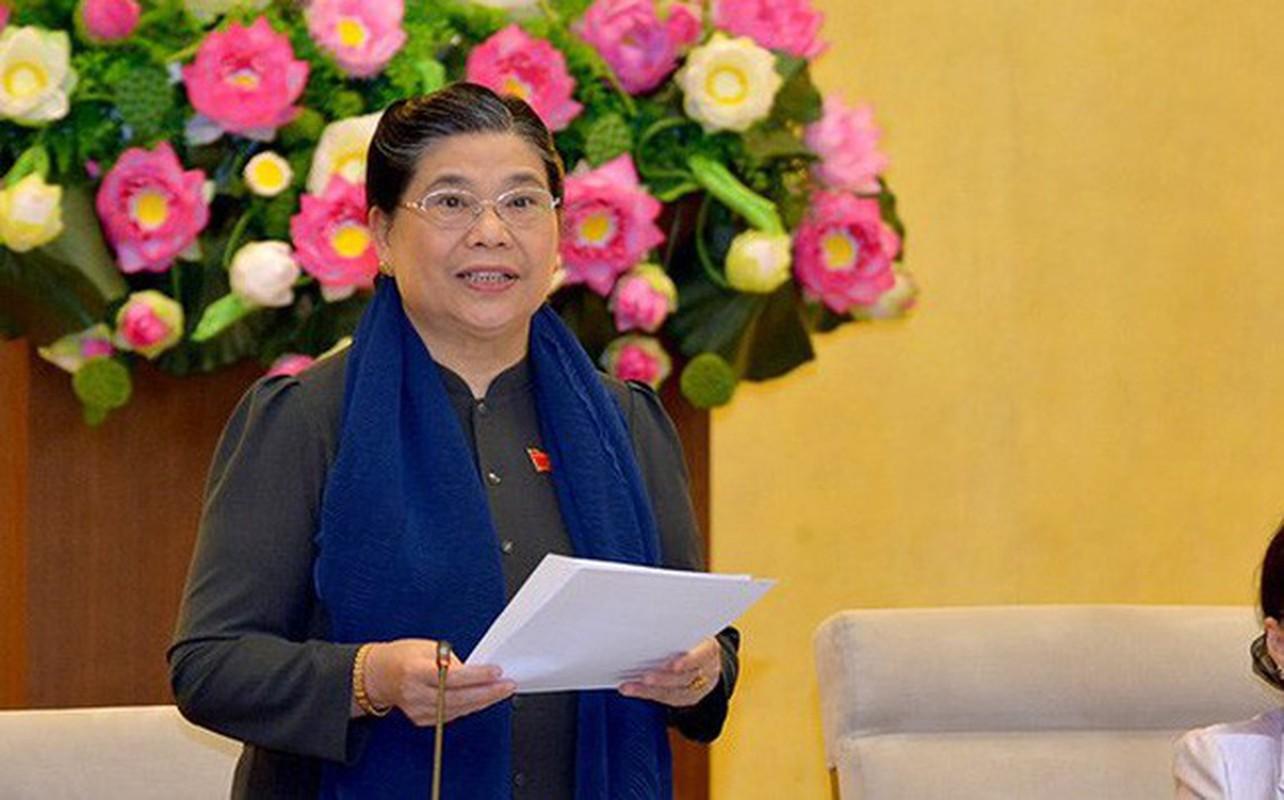 Chan dung nhung nu lanh dao cap cao o Viet Nam-Hinh-9