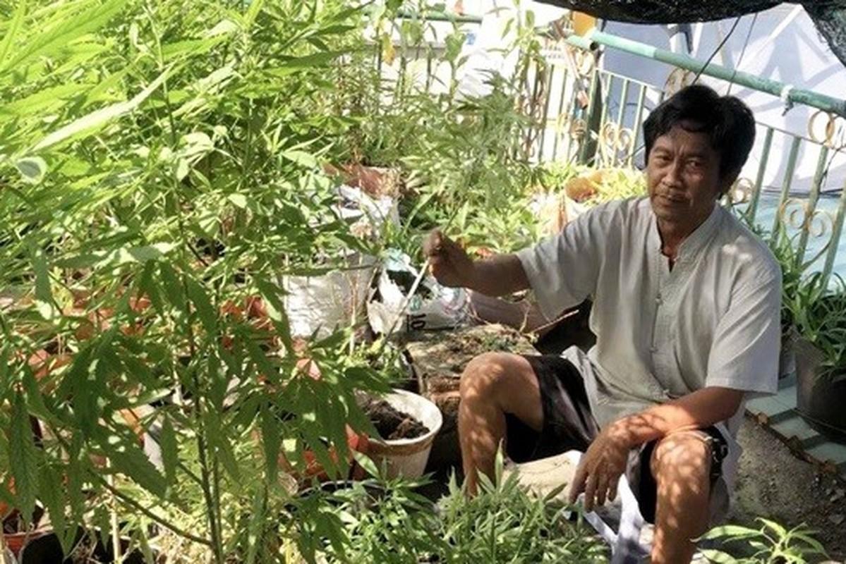 """Tin nong ngay 11/12: Lo gia ve """"dong thac loan"""" dong tinh nam-Hinh-4"""