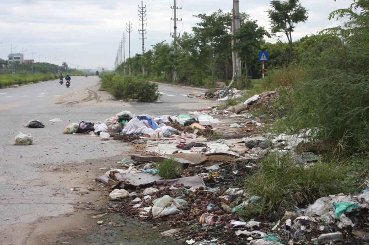 Ha Noi: Co moc um tum o duong Tay Thang Long 480 ty-Hinh-12