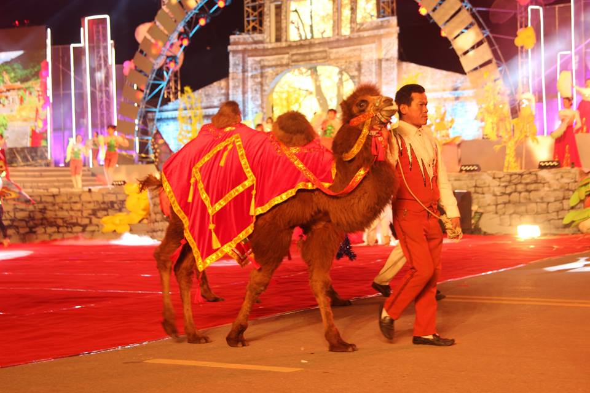 Anh: Hang nghin nguoi tham gia le hoi duong pho Carnaval Hai Duong-Hinh-15