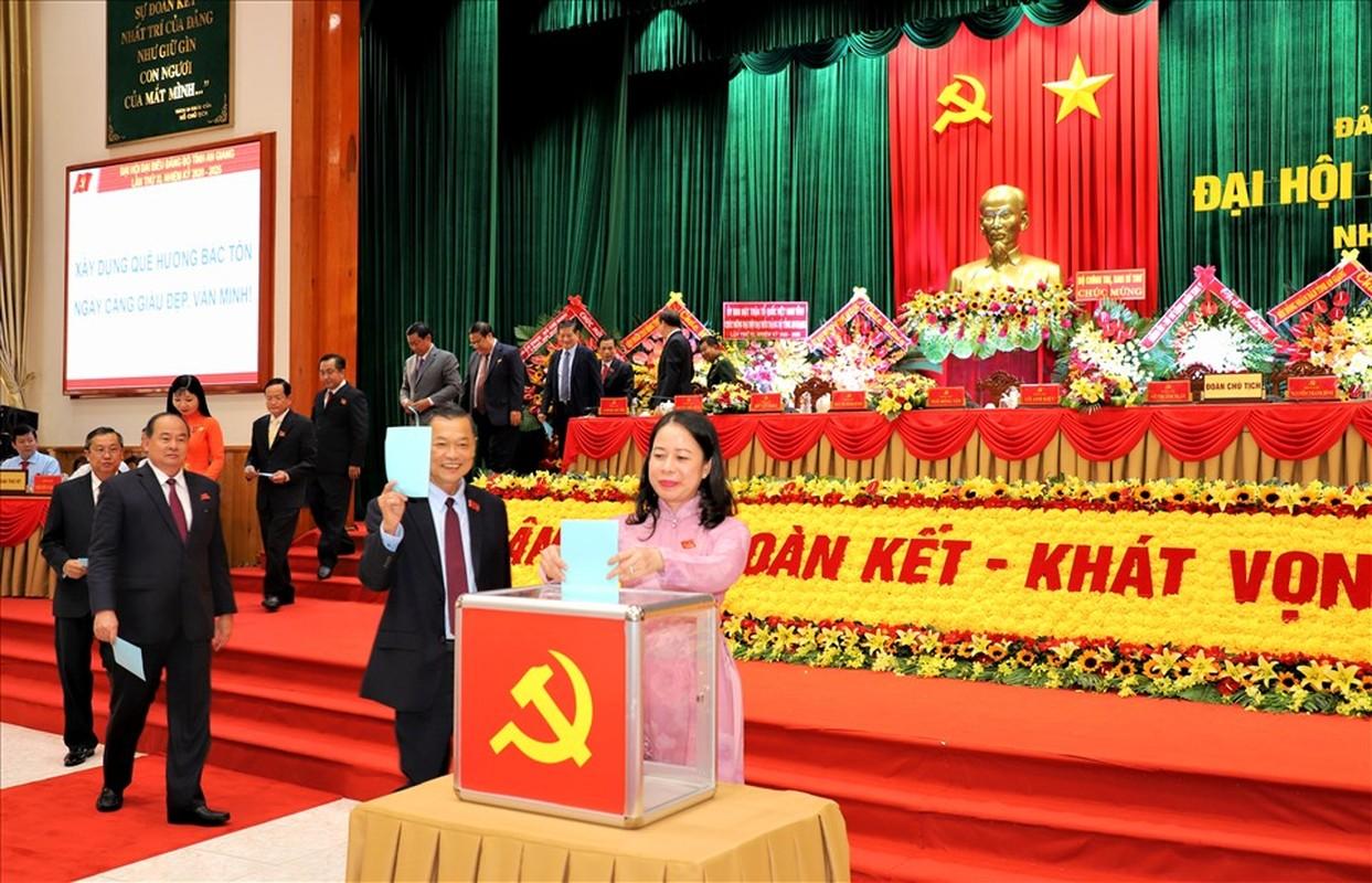 Bi Thu tinh uy An Giang duoc gioi thieu de bau lam Pho Chu tich nuoc-Hinh-10