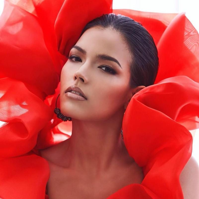 Soi tai, sac doi thu dang gom cua Hoang Thuy tai Miss Universe 2019-Hinh-11