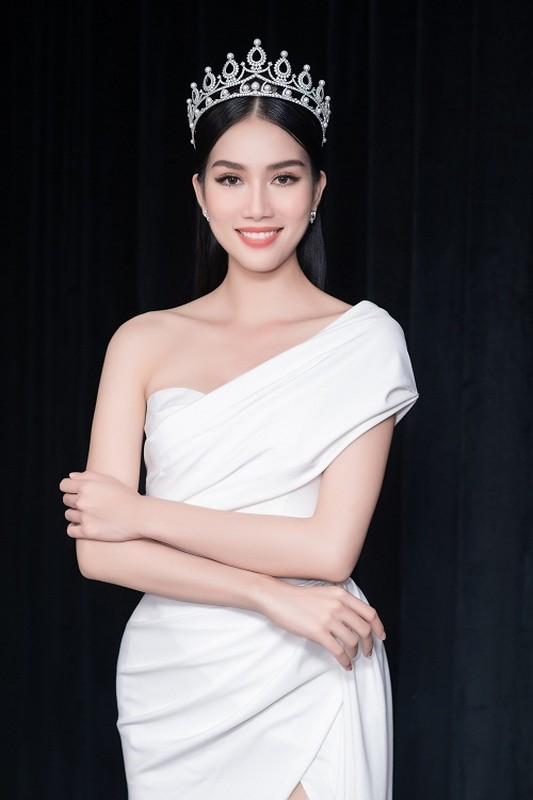 Fan quoc te du doan A hau Phuong Anh dang quang Miss International-Hinh-11