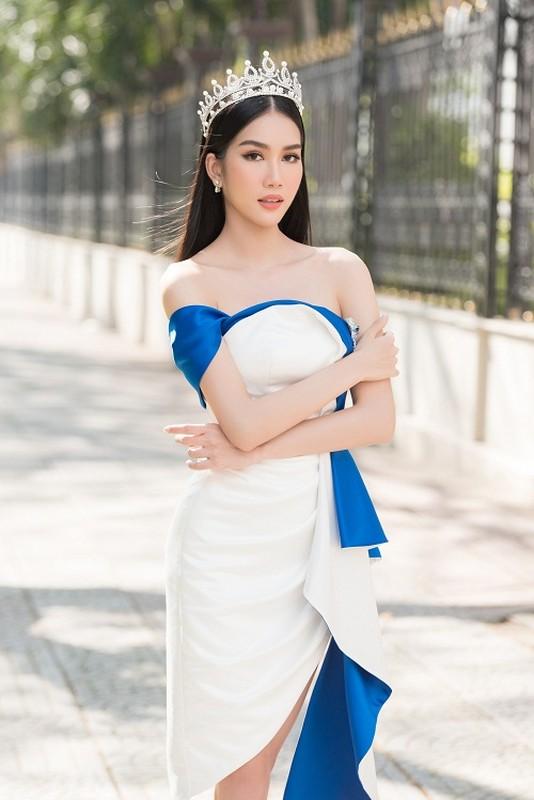 Fan quoc te du doan A hau Phuong Anh dang quang Miss International-Hinh-5