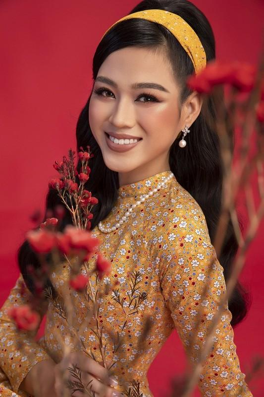 Hoa hau Do Thi Ha dep thoi mien trong bo anh Tet-Hinh-12