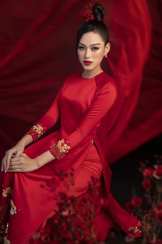 Hoa hau Do Thi Ha dep thoi mien trong bo anh Tet-Hinh-4