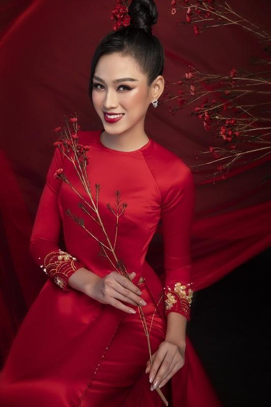 Hoa hau Do Thi Ha dep thoi mien trong bo anh Tet-Hinh-5