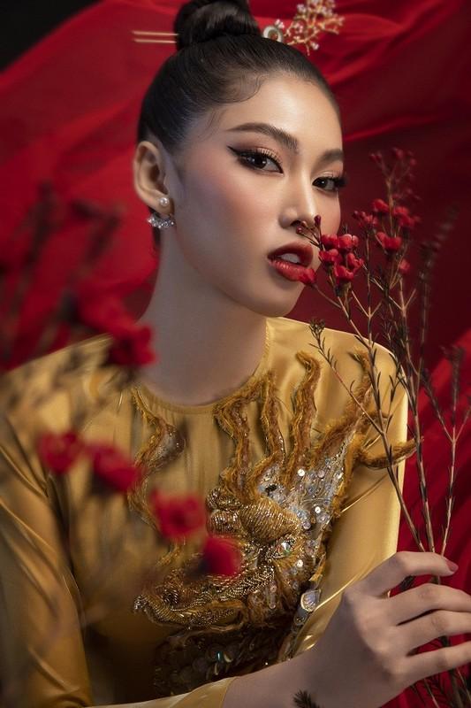 Hoa hau Do Thi Ha dep thoi mien trong bo anh Tet-Hinh-8
