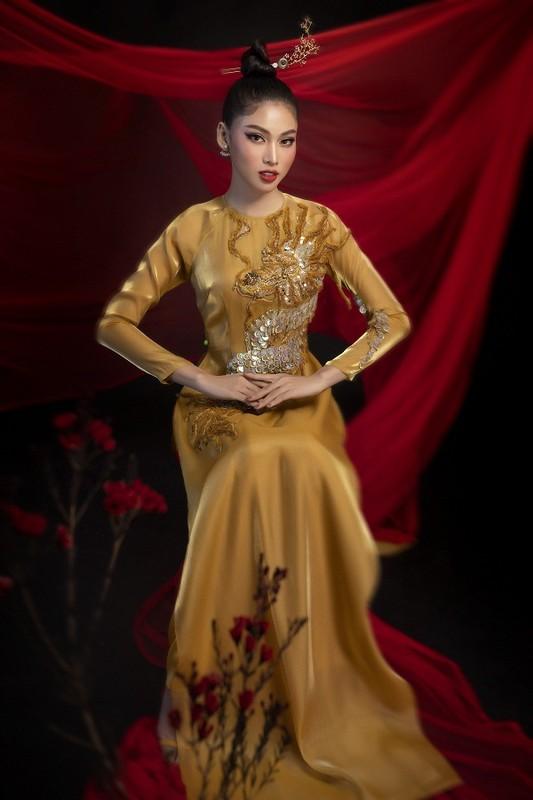 Hoa hau Do Thi Ha dep thoi mien trong bo anh Tet-Hinh-9