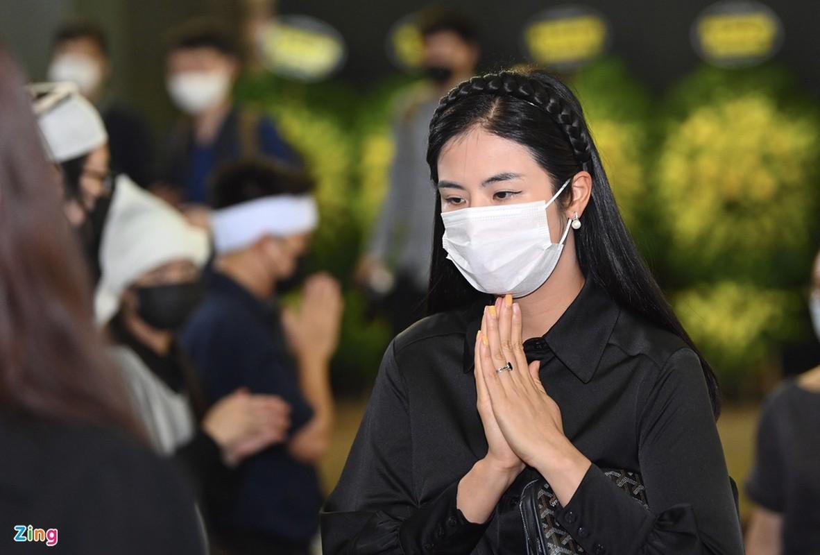 Ngoc Han, Do My Linh den tien biet Hoa hau Thu Thuy-Hinh-4