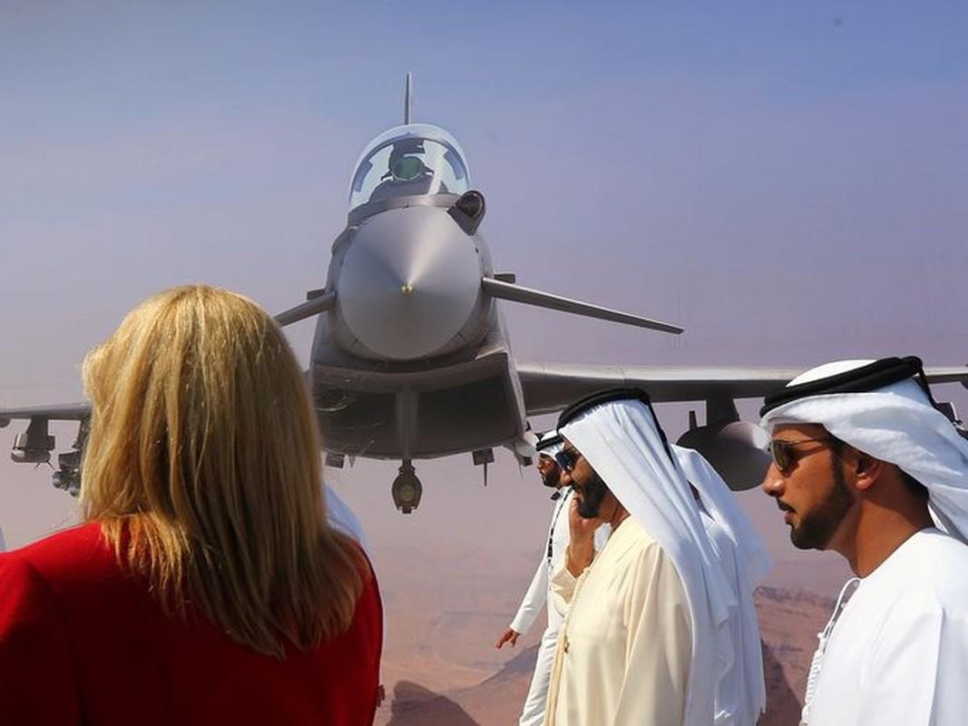 Toan canh hoanh trang cua trien lam hang khong Dubai Air Show-Hinh-5
