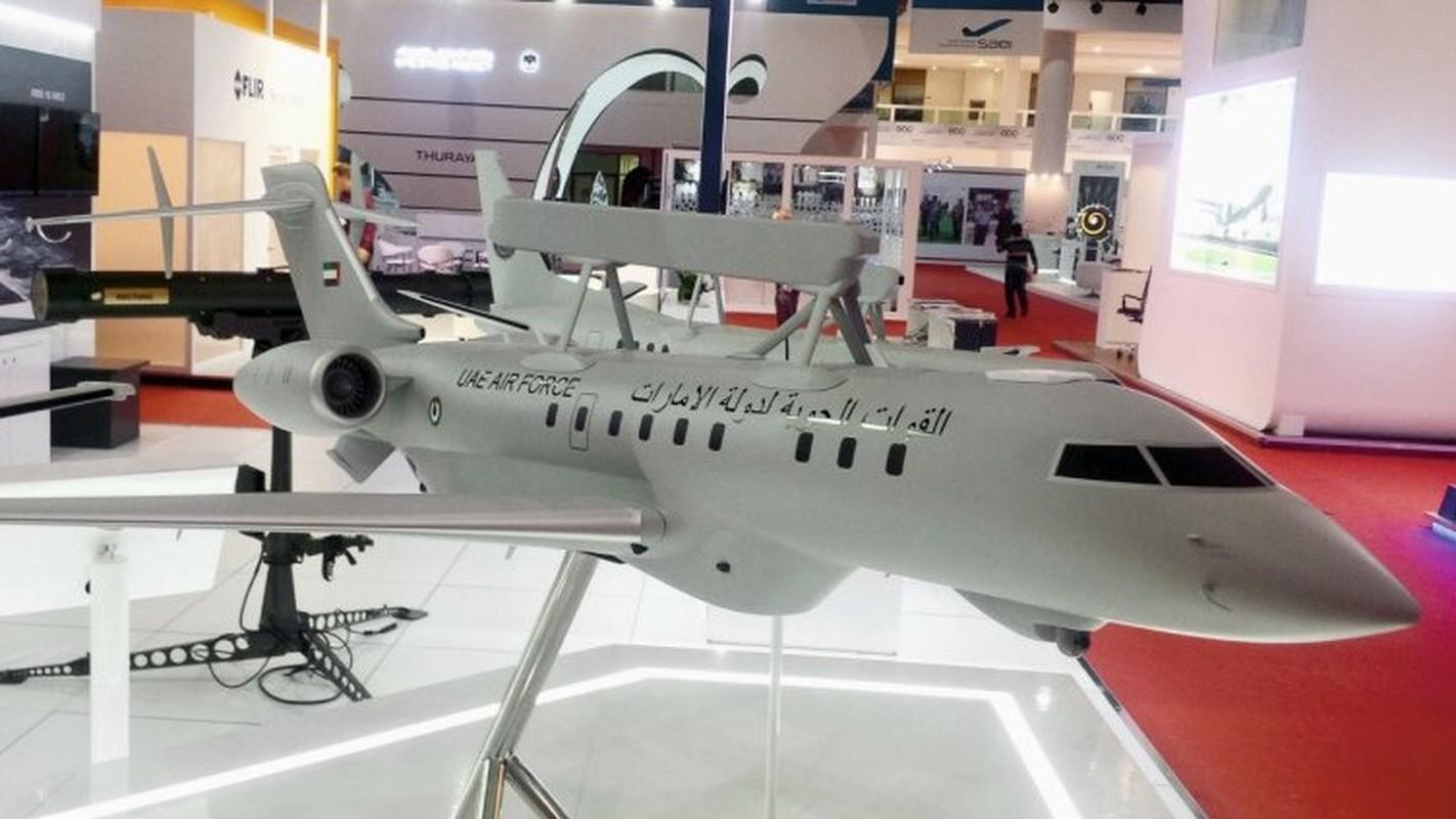 Toan canh hoanh trang cua trien lam hang khong Dubai Air Show-Hinh-6