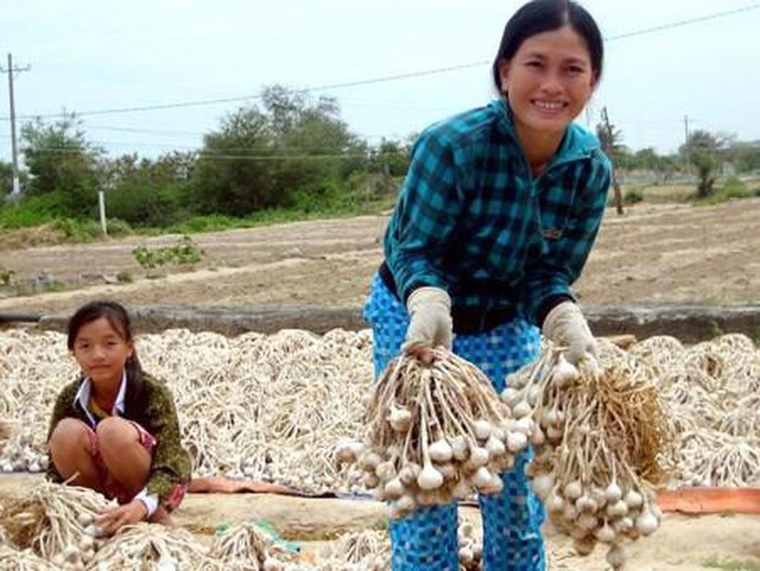 Nhung dac san Ninh Thuan hap dan khien du khach nho mai-Hinh-13