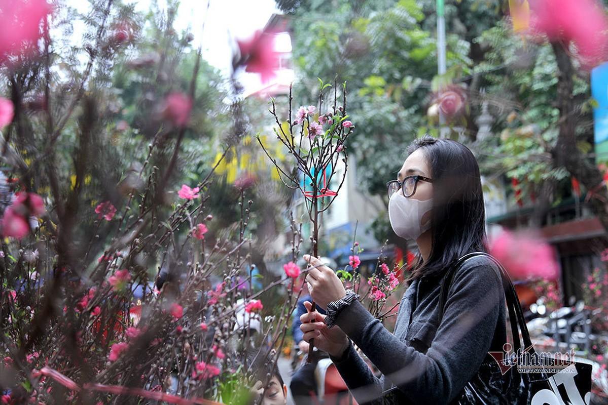 8 ngay nua den Tet, cho hoa pho co Ha Noi vang chua tung co-Hinh-15