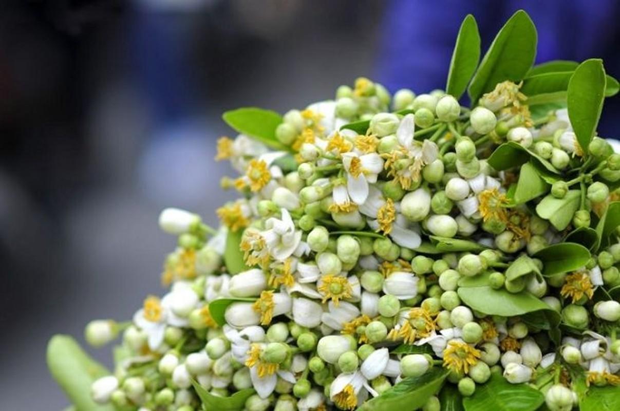 Cac mon ngon tu hoa buoi khien ban nho mai khong quen-Hinh-2