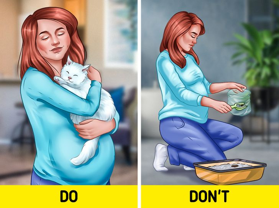 9 dieu me bau nen/khong nen lam khi mang thai de sinh con khoe manhl-Hinh-9