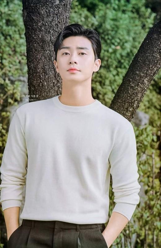 Bi kip giup my nam Park Seo Joon so huu lan da dep khong ti vet-Hinh-5