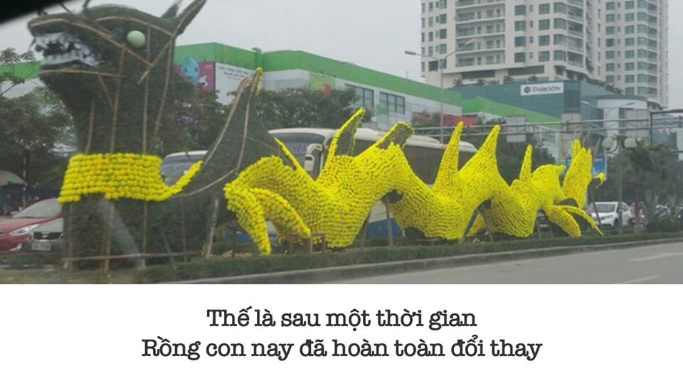 Cuoi nga nghieng voi tho, anh che ve con rong Hai Phong-Hinh-8