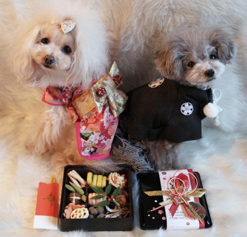 Chet me voi dan cho Nhat Ban dien kimono don nam moi-Hinh-10