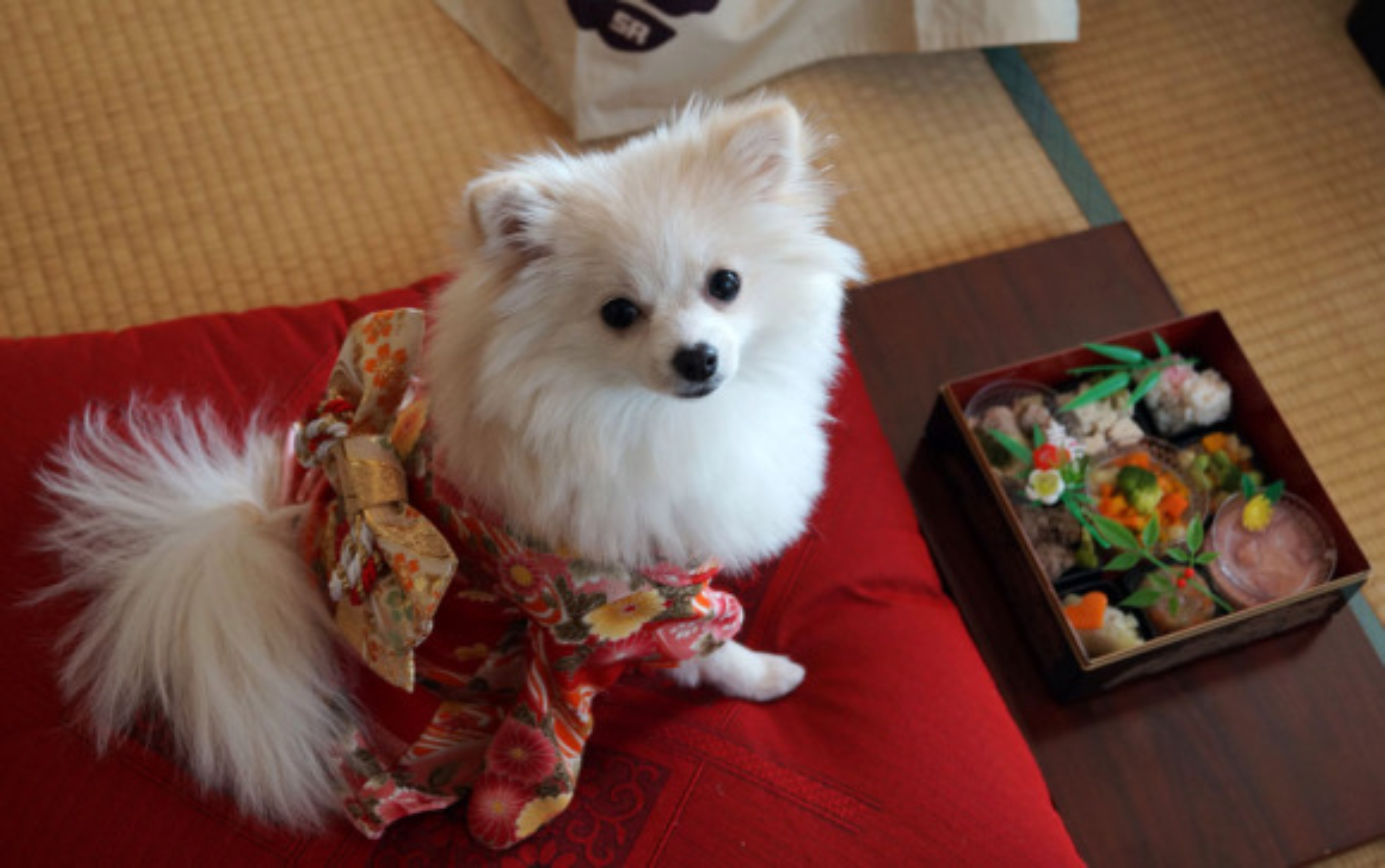 Chet me voi dan cho Nhat Ban dien kimono don nam moi-Hinh-11
