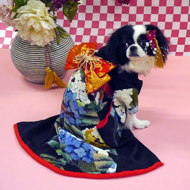 Chet me voi dan cho Nhat Ban dien kimono don nam moi-Hinh-12