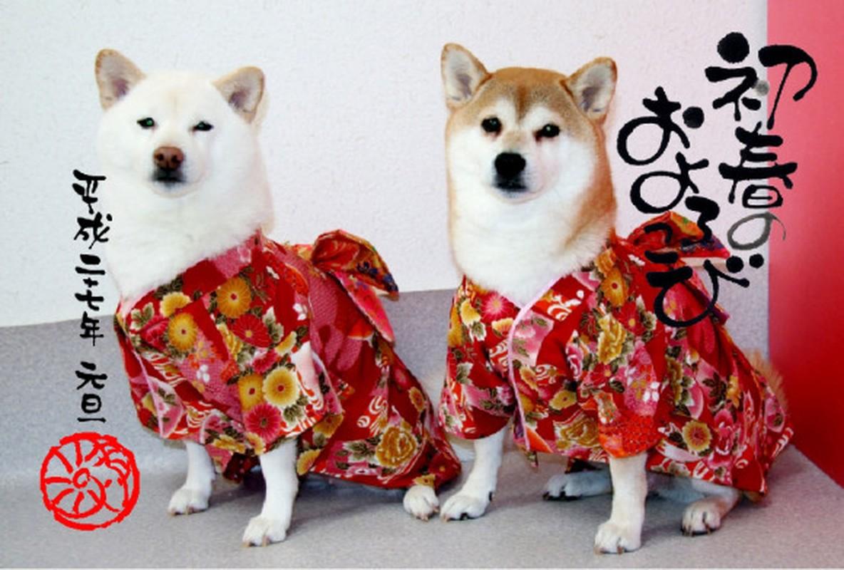 Chet me voi dan cho Nhat Ban dien kimono don nam moi-Hinh-9