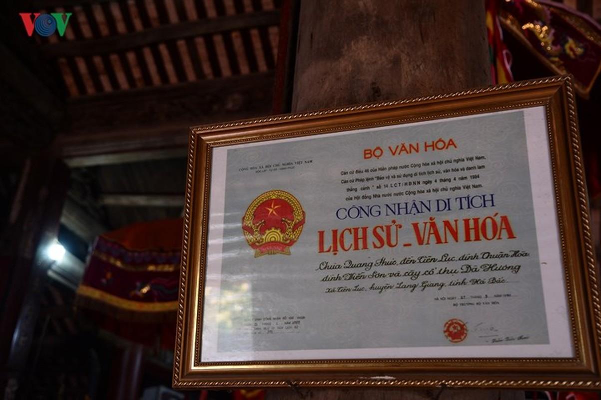 Chiem nguong cay Da Huong nghin nam tuoi o Bac Giang-Hinh-13