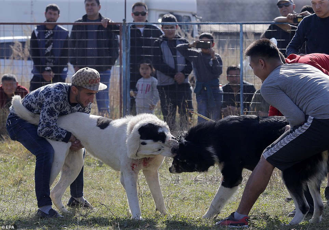Cho tram kg choi nhau dam mau o Kyrgyzstan gay phan no tot cung-Hinh-7