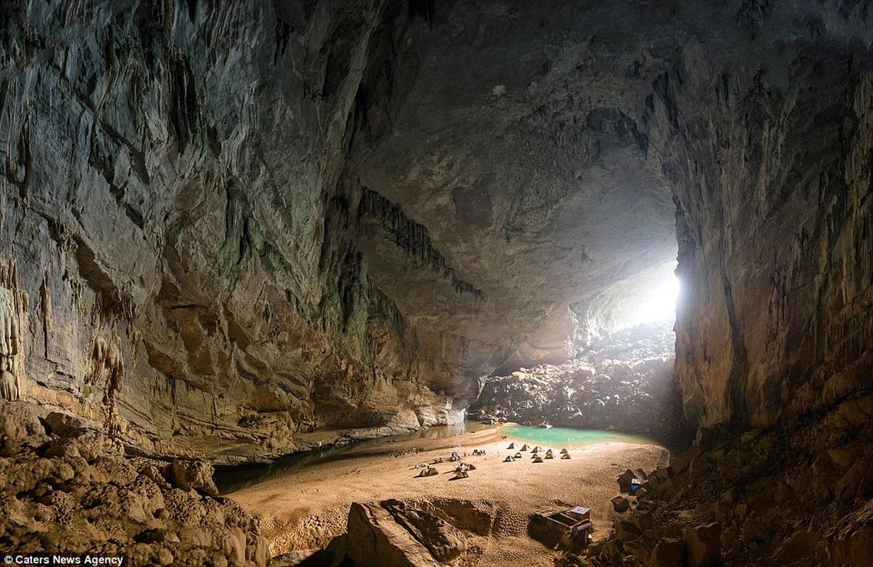 Tuyet dep hang En Viet Nam tren bao Anh-Hinh-2
