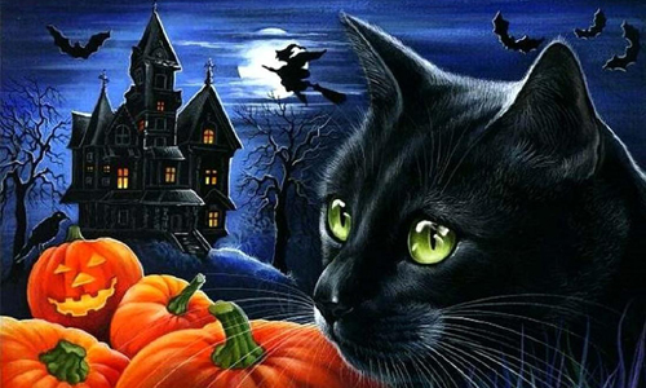 Nhung tiet lo bat ngo ve le hoi Halloween-Hinh-4