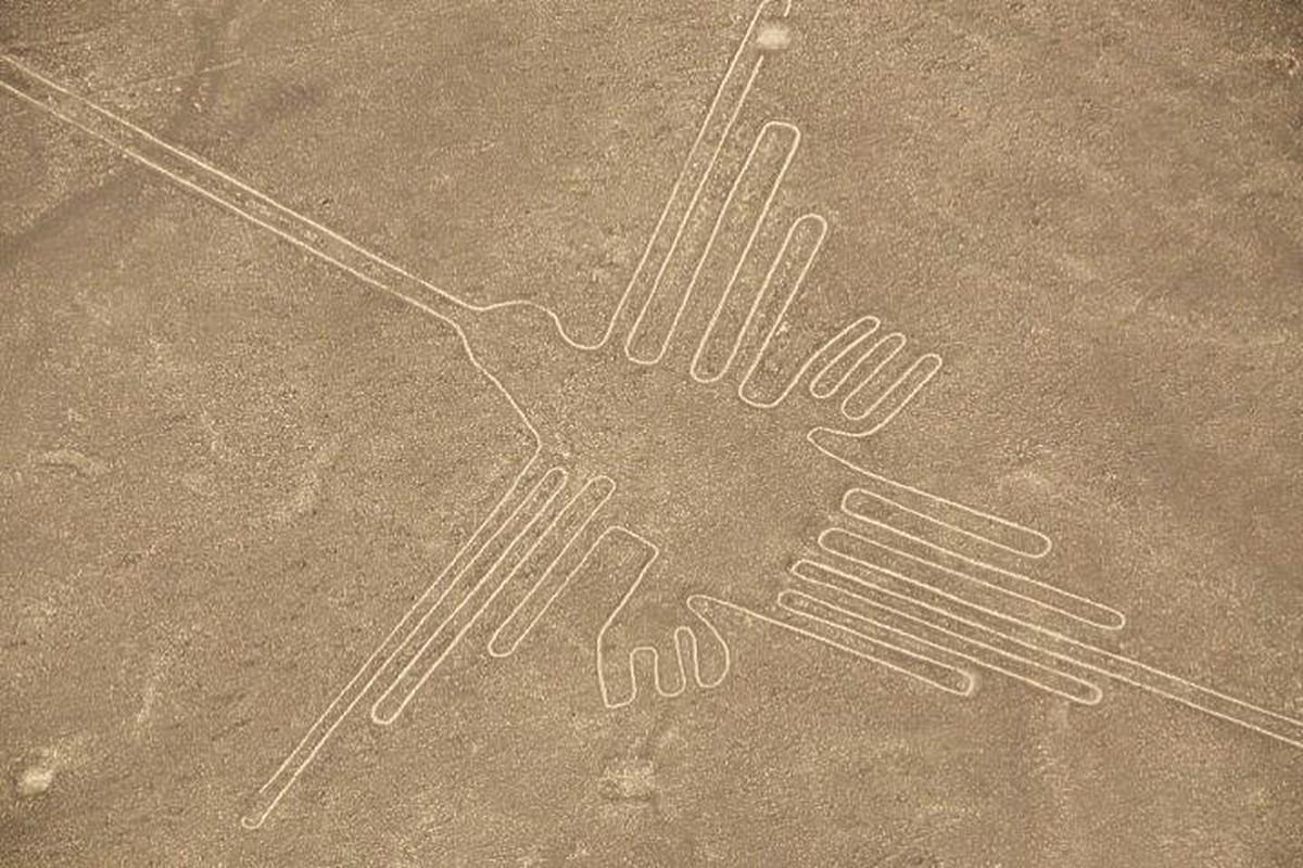 Cuc sot: Duong ke Nazca cuoi cung da duoc giai ma?-Hinh-3