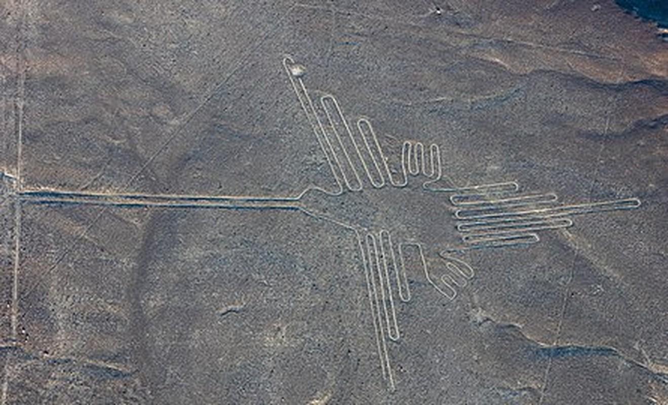 Cuc sot: Duong ke Nazca cuoi cung da duoc giai ma?-Hinh-5