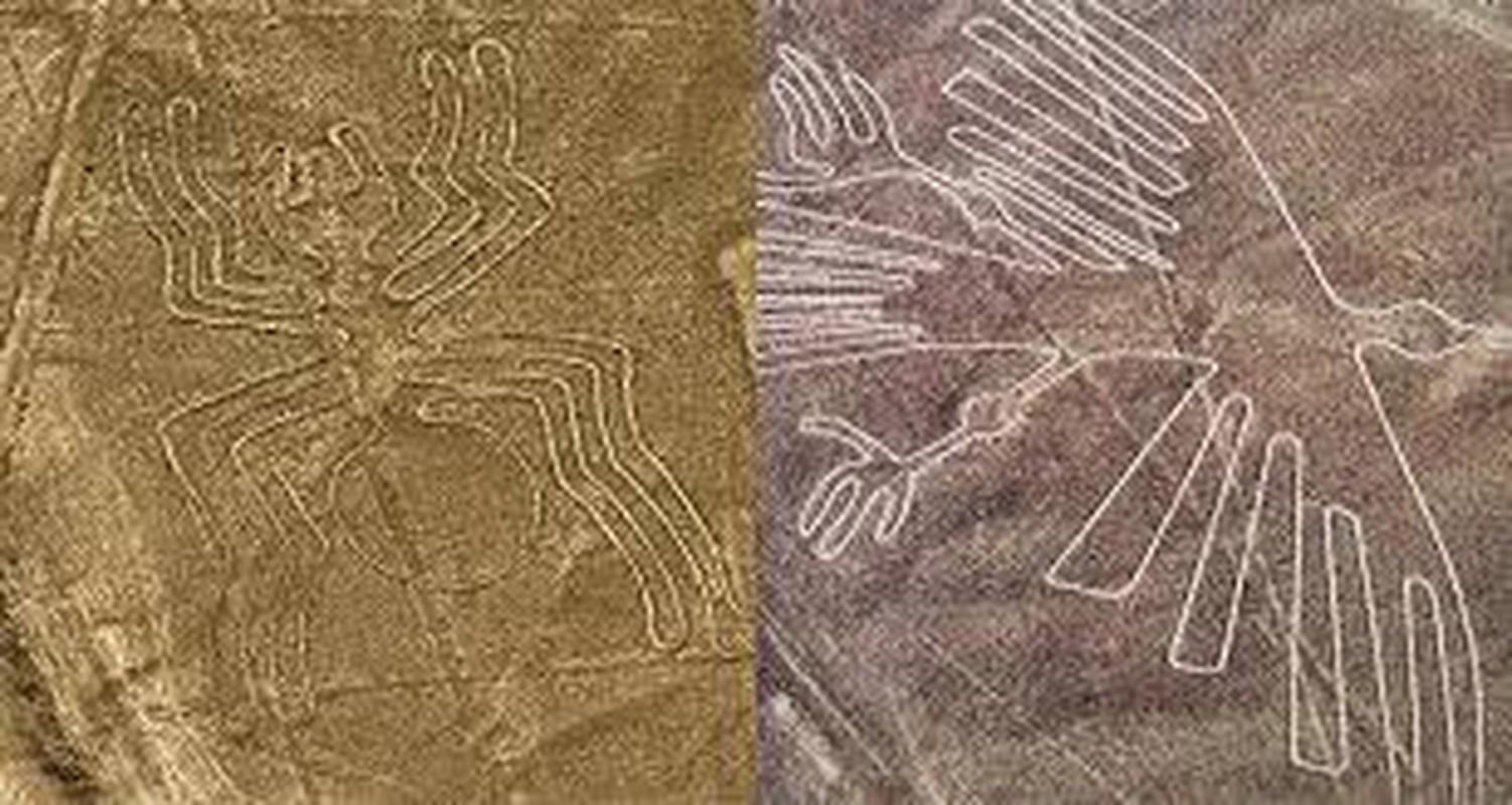 Cuc sot: Duong ke Nazca cuoi cung da duoc giai ma?-Hinh-6