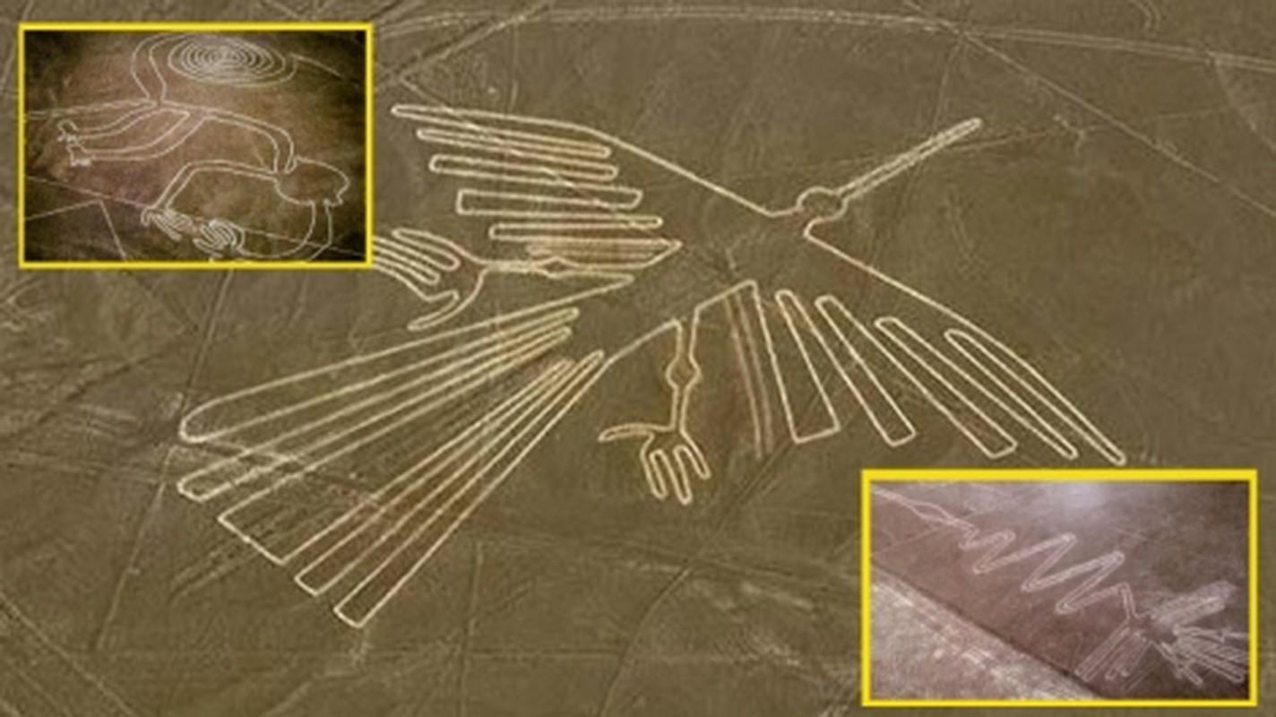 Cuc sot: Duong ke Nazca cuoi cung da duoc giai ma?-Hinh-9