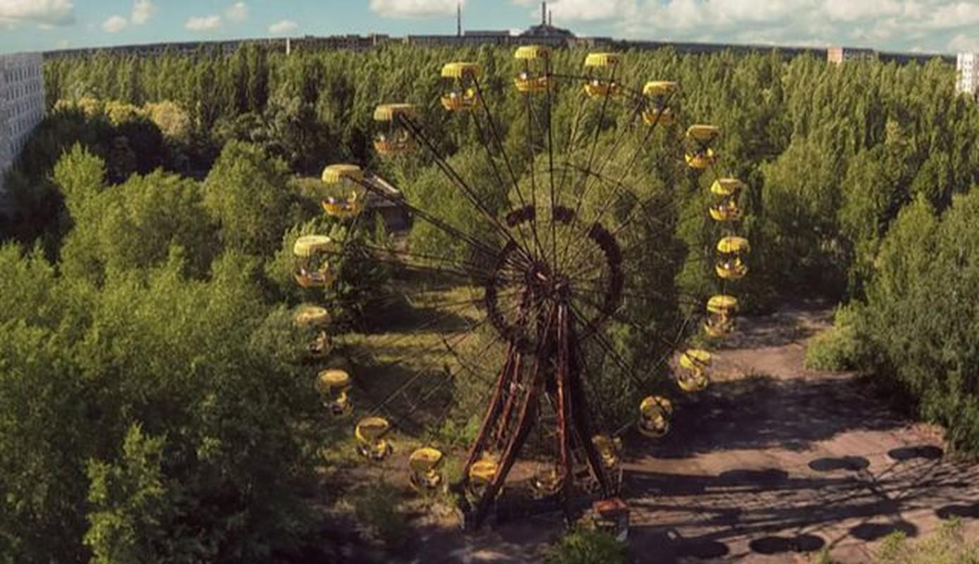 Vi sao thuc vat o Chernobyl phat trien than ky sau tham hoa?-Hinh-8
