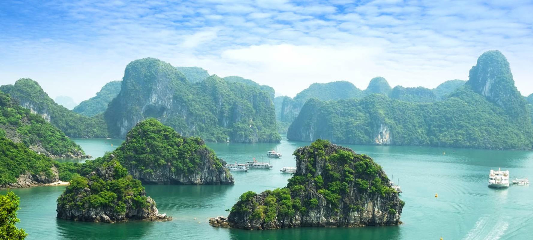 Cuc an tuong hinh anh Viet Nam tren bao Tay nam 2019-Hinh-5