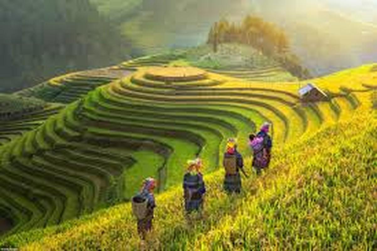 Cuc an tuong hinh anh Viet Nam tren bao Tay nam 2019-Hinh-6